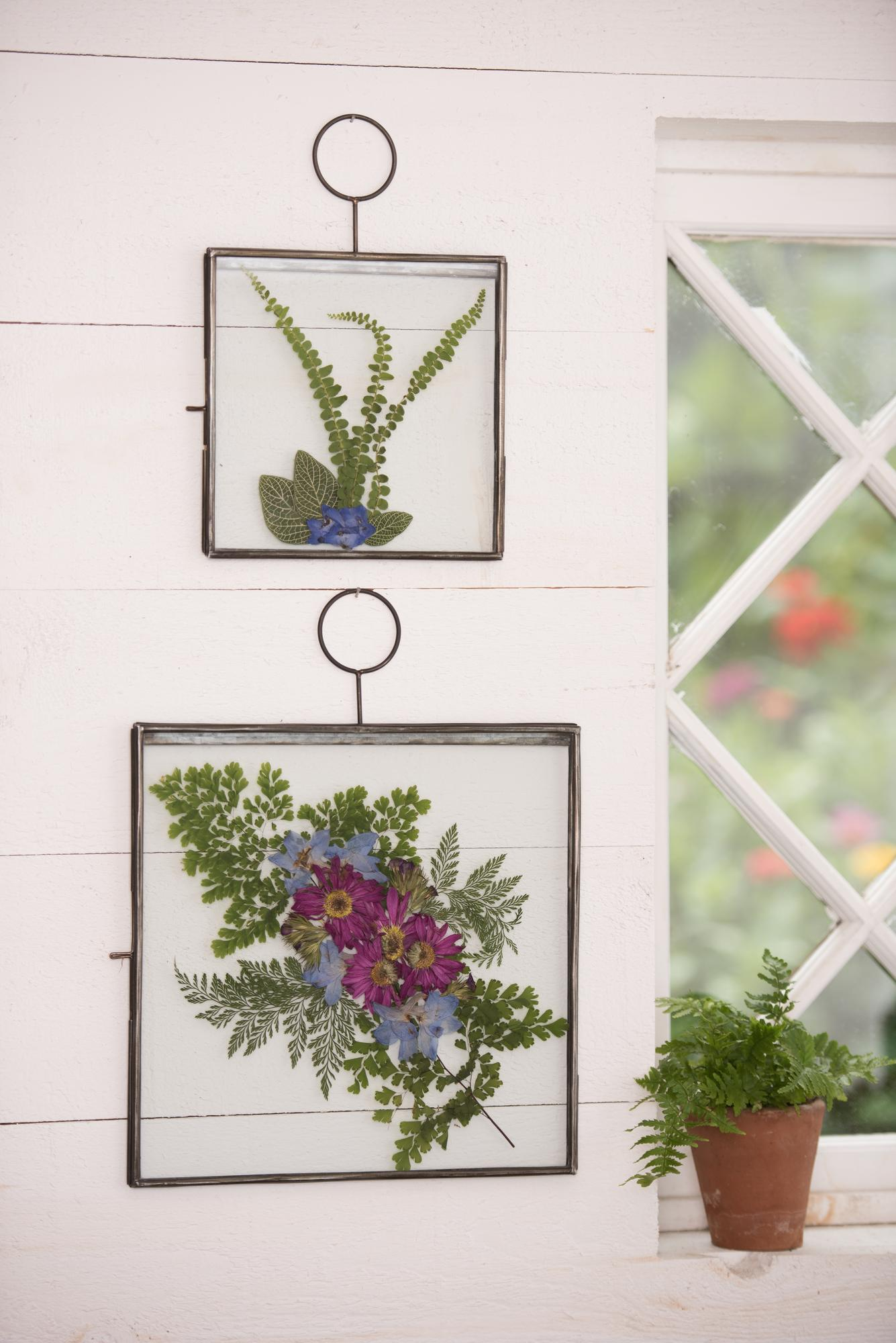 Plant Press Wall Art Sold Out Tickets In Williston Vt United States