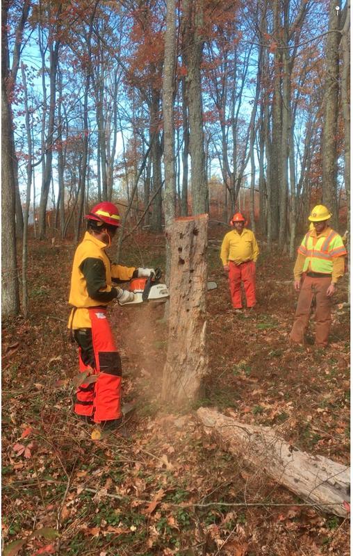 S-212 Wildland Fire Chain Saws 052018