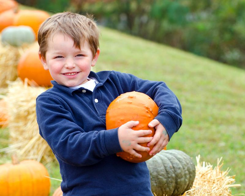 Niederman Family Farm - Fall Festival 2014