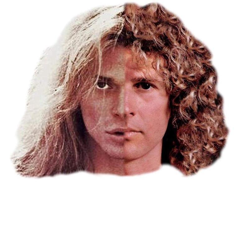Next Halen: Best of Both Worlds