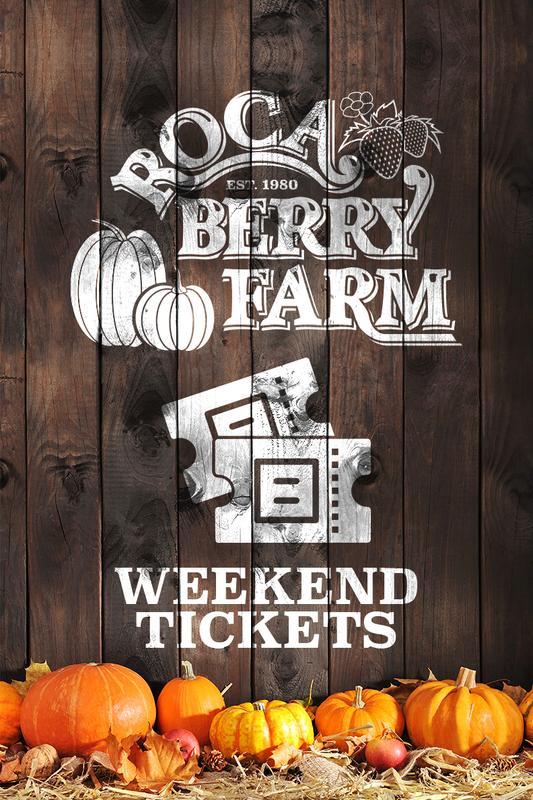 Weekend: Daytime Tickets
