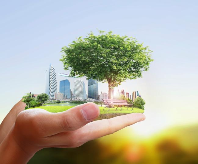 Online Diploma on Corporate Sustainability