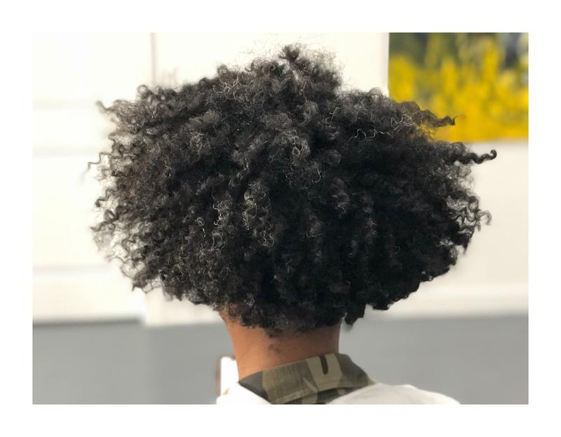 Twist Out Styling Clinic