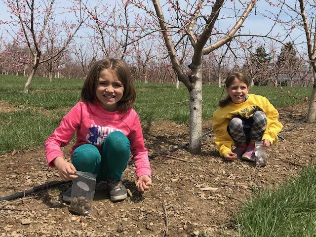 Spring Tours at Flinchbaugh's Orchard 2020
