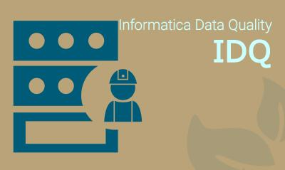 Informatica Data Quality Training Online With 100% Job Assistance