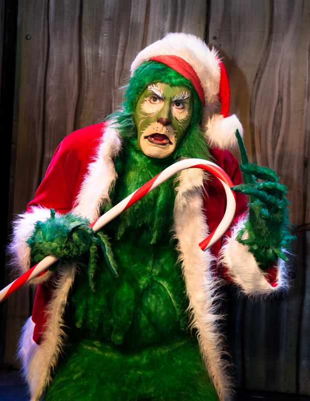 A very Grinchy Holiday Special 2017