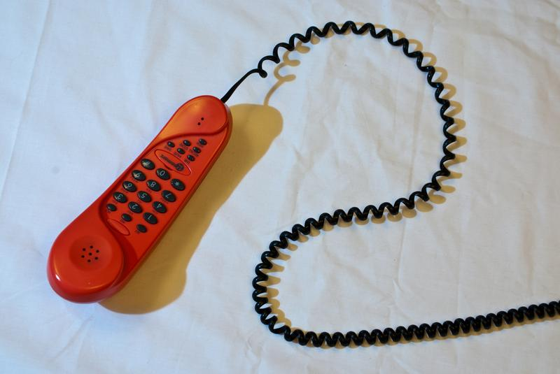 YIP's Get Out the Vote Phone Bank: New Voters
