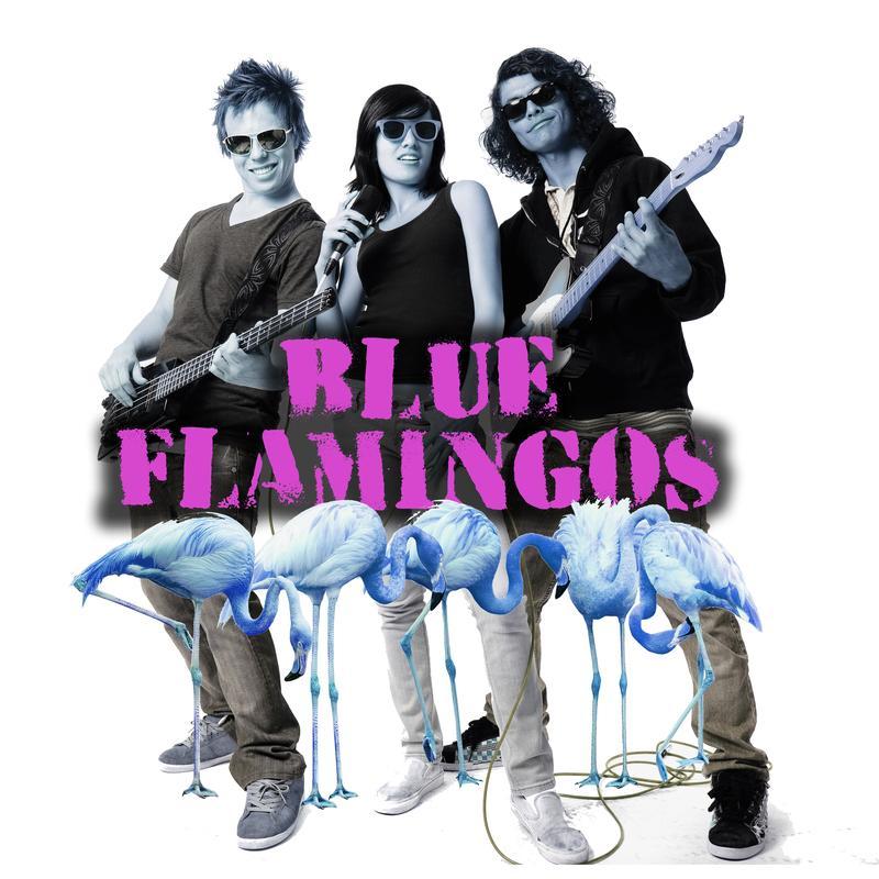 Blue Flamingos Concert