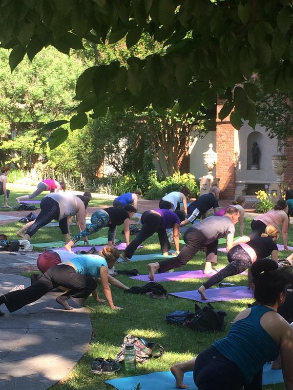 Sunday Serenity Yoga