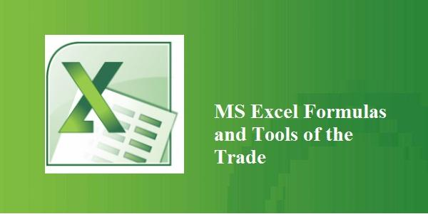 4 Hour Live Virtual Training on MS Excel Formulas and Tools of the Trade