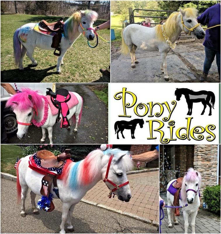 Pony Rides at Minard's Family Apple & Pumpkin Picking Farm