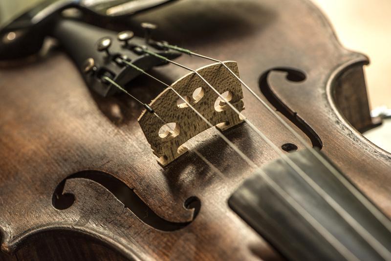 Stringband Music & Arts Festival