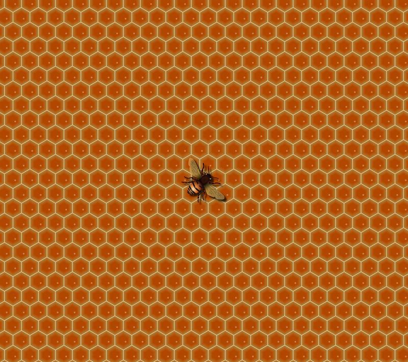 Beehive (6 to 10 years) @ Roy & Helen Hall