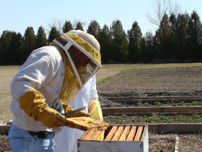 Advanced 1 - Beekeepers CLass