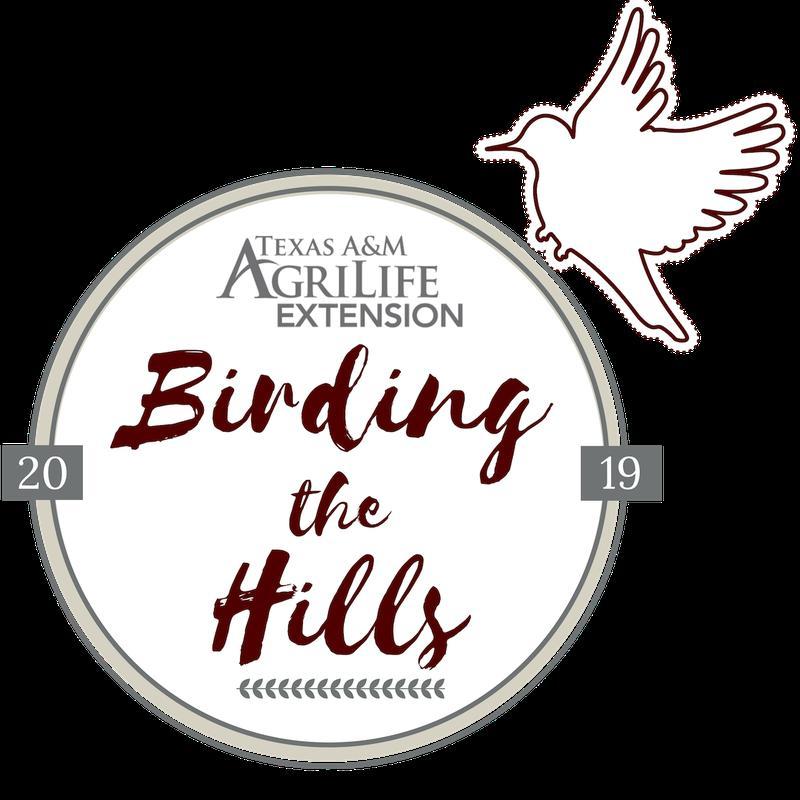 Birding the Hills 2019