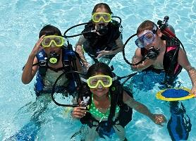 Use Quality Source To Gain Information About Open Water Course Phuket