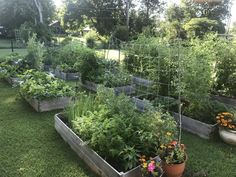 3 Part Organic Gardening Class