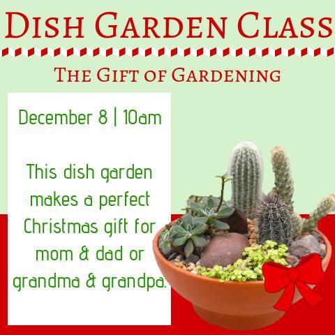 Make & Take Dish Garden Class