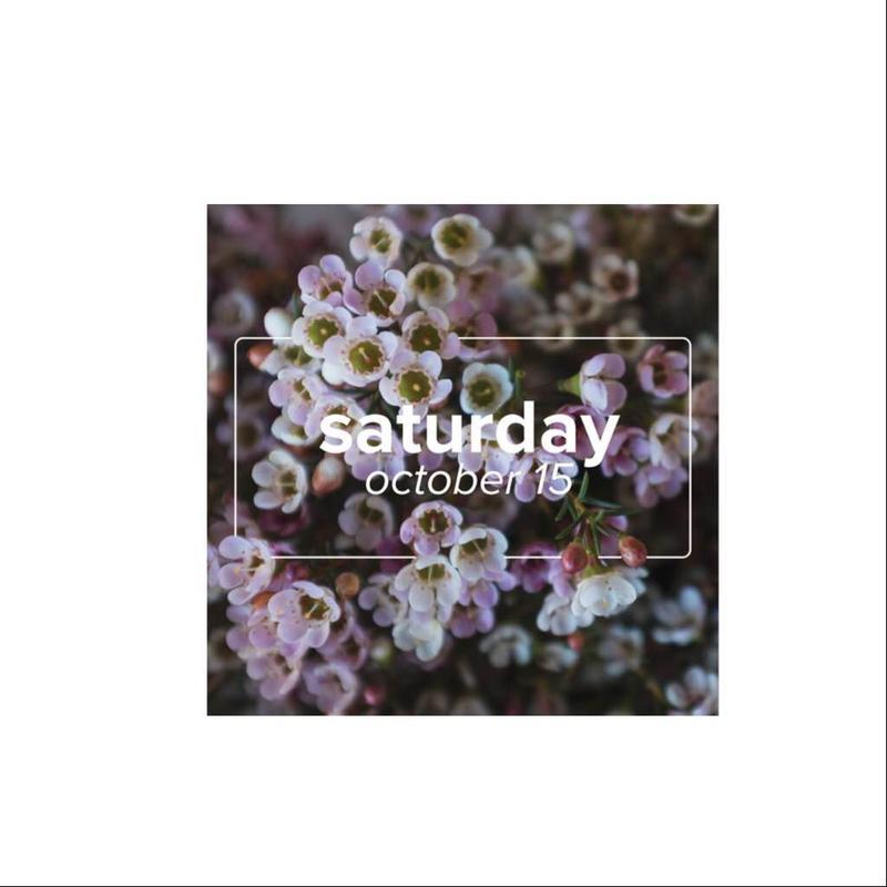 detroit flower week day pass: saturday
