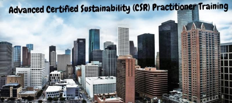 Advanced Certified Sustainability (CSR) Practitioner Training