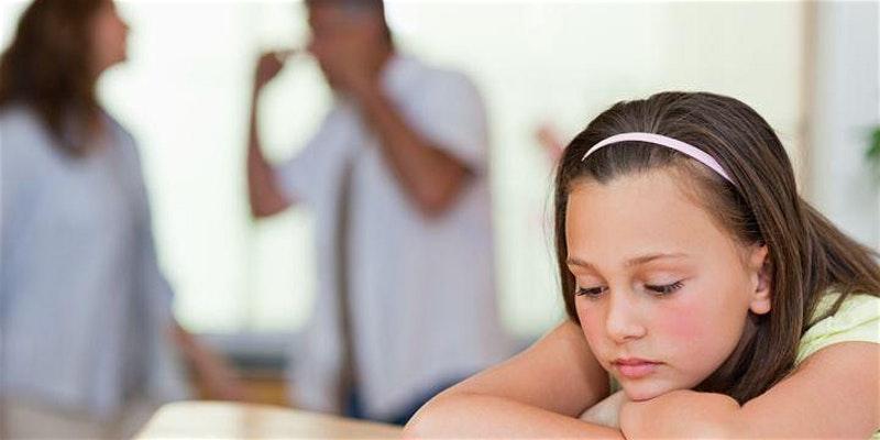Child Wellbeing Divorce Seminar 2020