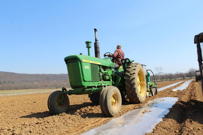 Ort Farms Storytime: Tractor Lovers Playdate