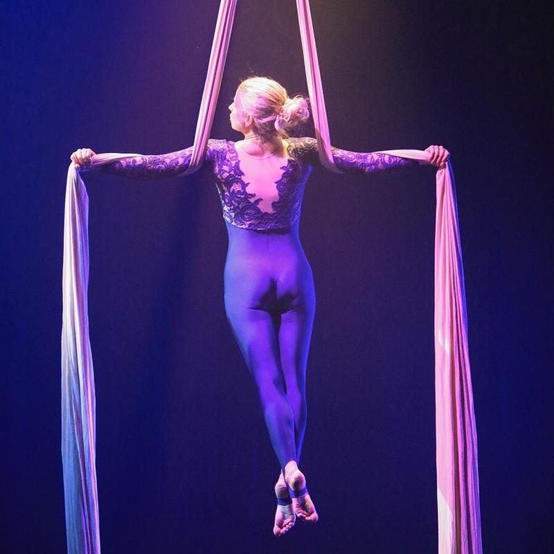 Lucia Aerial and VidaDance Present: The Greatest Show at Fringe