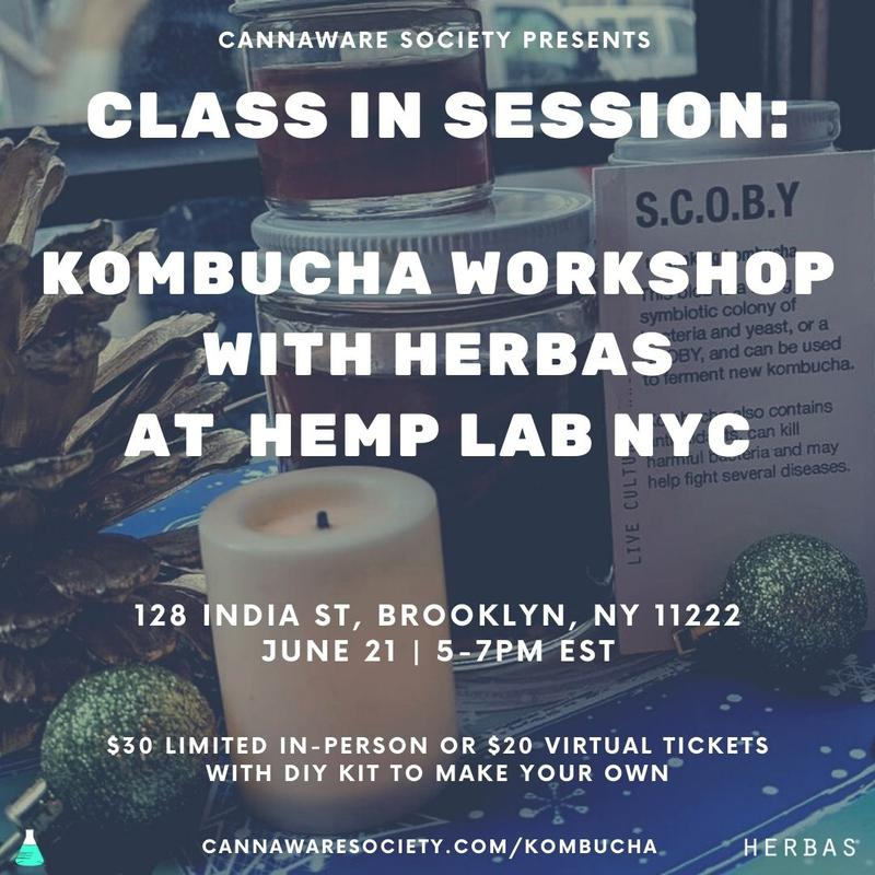 Class in Session - Kombucha workshop