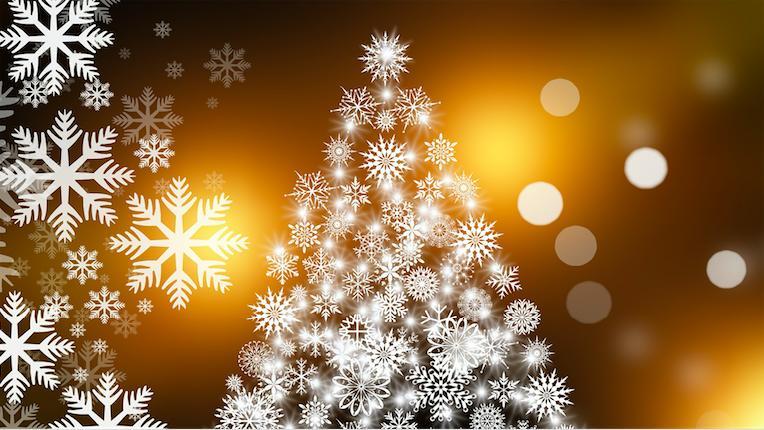 Cena de Navidad / Christmas Dinner