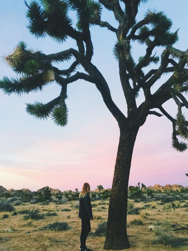 MOTHERSHIP: HER/LA's Female-Identified Festival & Retreat in Joshua Tree, CA!