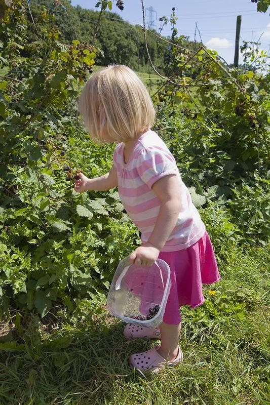 Mommy & Me: Spectacular Summer Fruits