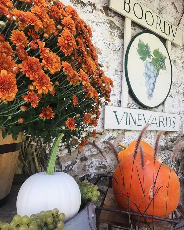 2018 Alumni Day at Boordy Vineyards