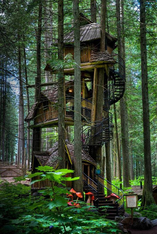 The Treehouse: Reloaded