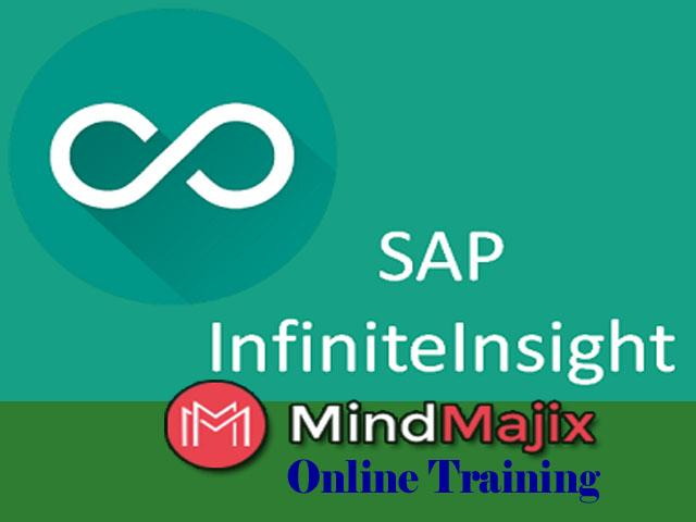 Learn about SAP  infiniteinsightTraining Online Free