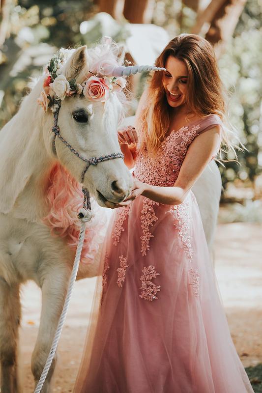The Unicorn Experience - Chocolate Decadence, Wine & Unicorns, Oh My!