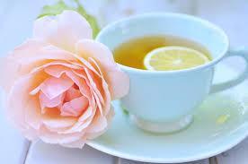 History Bites: Tea Tasting