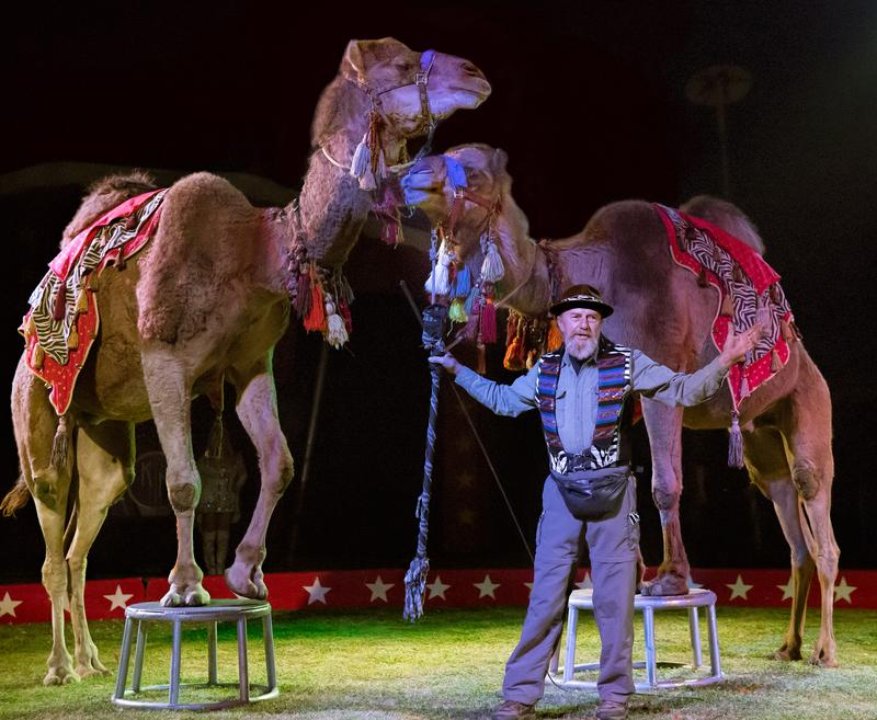 Kelly Miller Circus:  Litchfield, IL