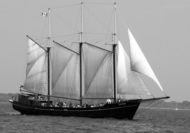 Lassonde Alumni Boat Cruise