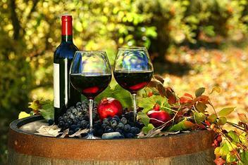 Wine Class:  Wine in the Garden Center