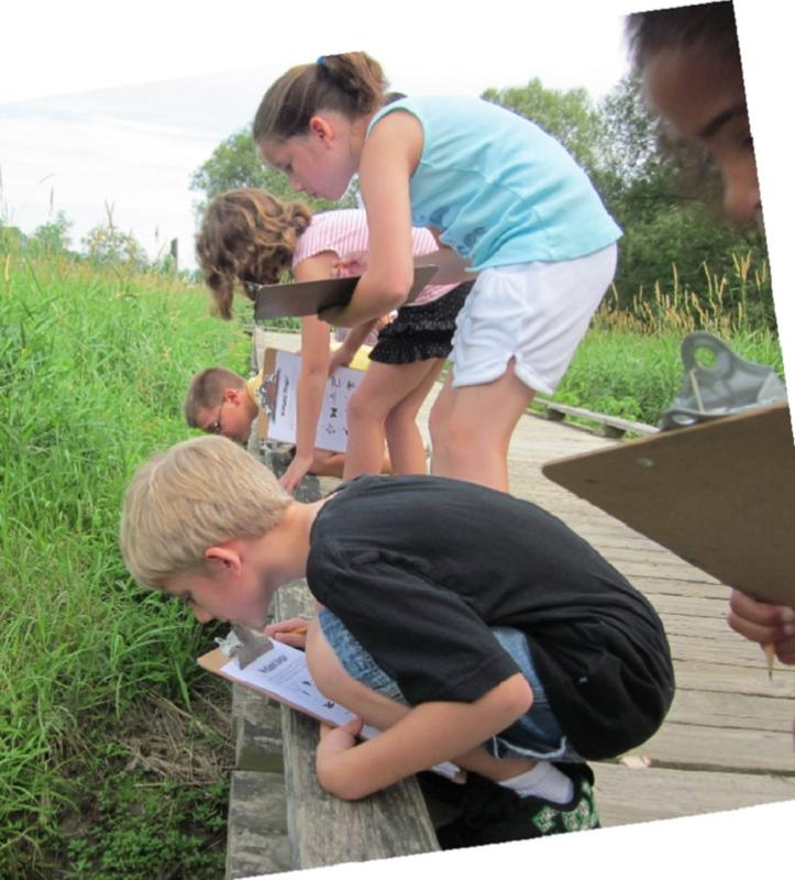 Junior Naturalist Day Camp