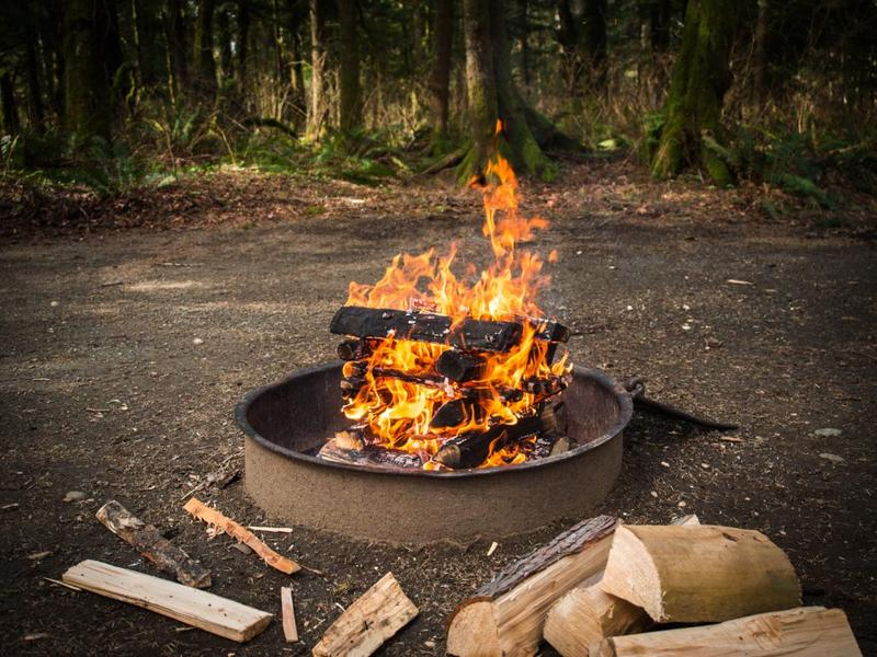 Fun Farm 2018 Campfire Reservations