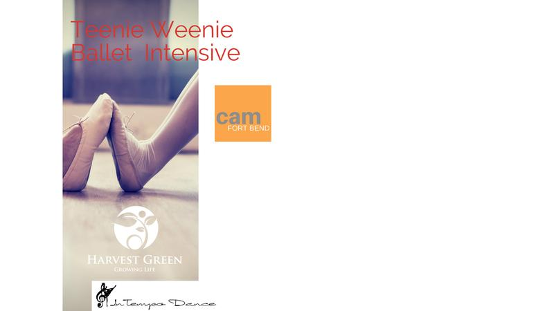 Teenie Weenie Ballet Intensive