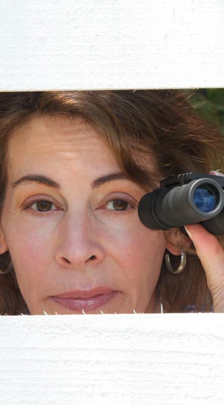 Lisa Pedace - Neighborhood Watch