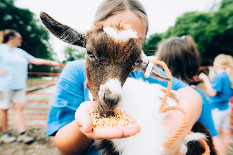 Visit Lucky Ladd Farms in 2018