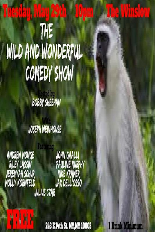 The Wild and Wonderful Comedy Show