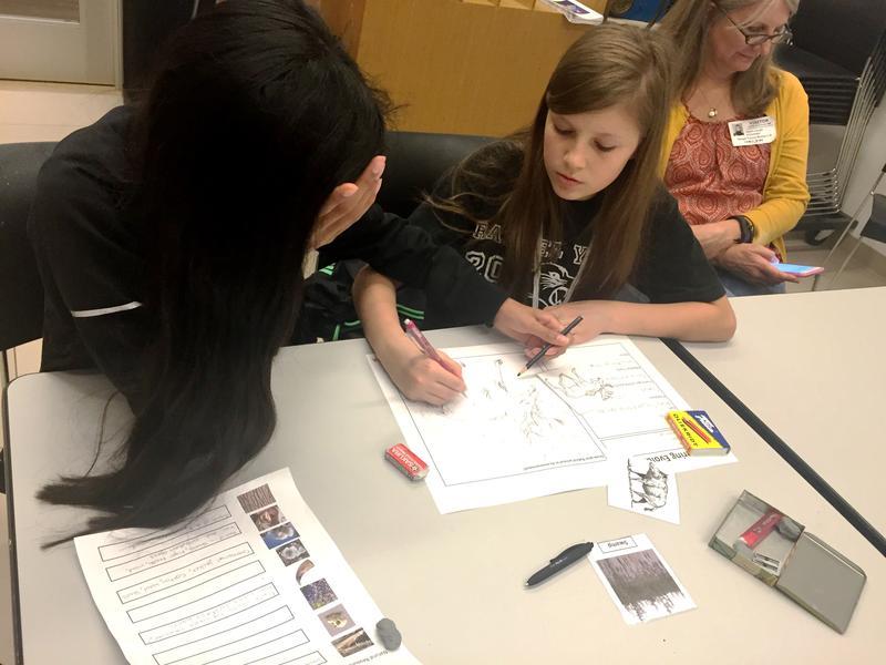 Teen Homeschool Workshop: Dec Arts Design Challenge