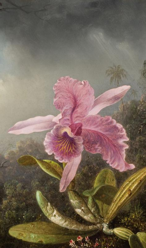 Virtual Field Trip for Members: Cross Pollinations: Reynolda, Olana, and the Thomas Cole Site