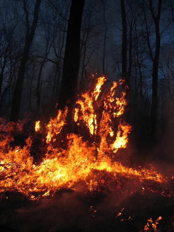 2020 Pennsylvania Wildland Fire Academy