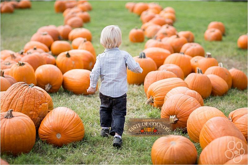 Pumpkin Fest 2018 Season Pass
