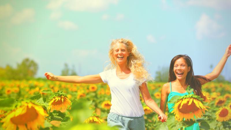 Summer '19 Pride of the Wapsi Sunflower Days Combo #6